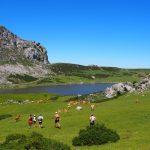 Anillo de Picos. Trekking Picos de Europa. Senderismo